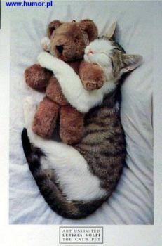 I can´t sleep without my Teddy